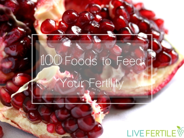 100 foods for fertility graphic.001